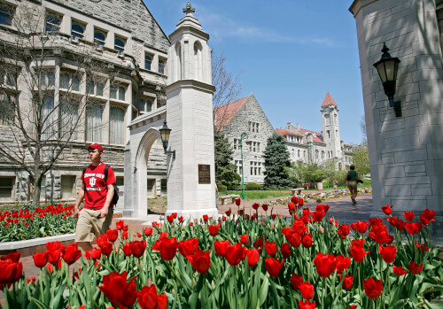 Indiana-University-Online-Master-of-Science-in-Finance