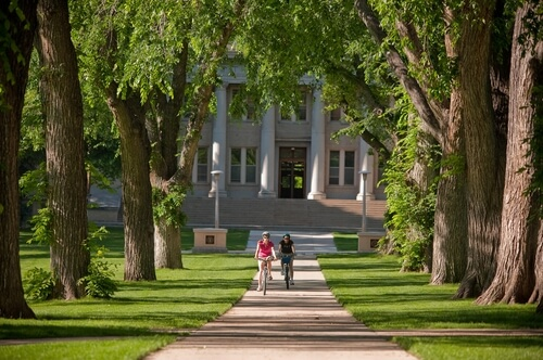 colorado-state-university-online-master-finance