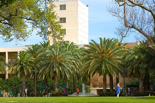 University of Miami - Best Online Master of Finance Degree Programs